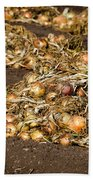 Onions Beach Towel