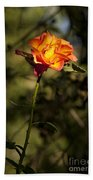 Orange And Yellow Rose Beach Towel