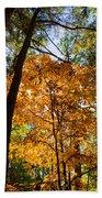 Orange Autumn II Beach Towel