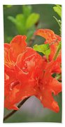 Orange Azalea At Moore State Park Beach Sheet