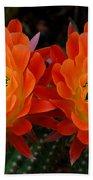 Orange Cactus Flowers Beach Towel