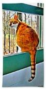 Orange Cat In Window Beach Towel