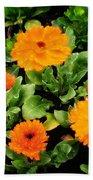 Orange Country Flowers - Series I Beach Towel