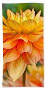 Orange Cream Dahlia Beach Towel