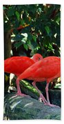 Orange Feathered Friends Beach Towel