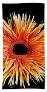 Orange Flower  Beach Towel