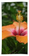 Orange Hibiscus Blossom Beach Towel