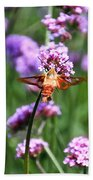 Orange Hummingbird Moth Beach Towel