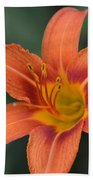 Orange Lily Photo 6 Beach Towel