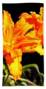 Orange Lily Twins Beach Towel