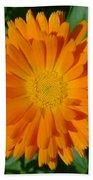 Orange Marigold Close Up With Garden Background Beach Towel