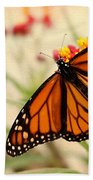 Orange Mariposa Beach Towel