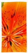 Orange Slices Beach Towel