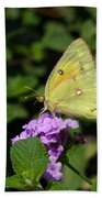 Orange Sulphur Beach Towel