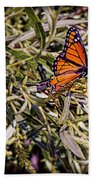 Orange Swallowtail Beach Towel