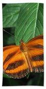 Orange Tiger Butterfly Or Banded Orange Beach Towel