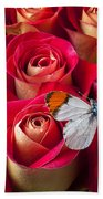 Orange Tip Butterfly Beach Towel