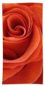 Orange Twist Rose 2 Beach Towel