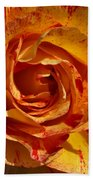 Orange Variegated Rose Beach Towel