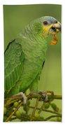 Orange-winged Parrot Amazonian Ecuador Beach Towel