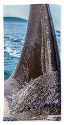 Orca Apex II Beach Towel