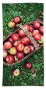 Orchard Fresh Picked Apples Beach Towel