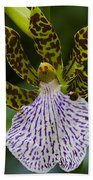 Orchid 11 Beach Towel