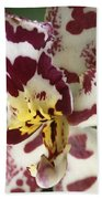 Orchid 32 Beach Towel
