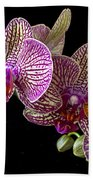 Orchid And Orange Butterfly Beach Towel