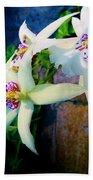 Orchid Cascade Beach Towel