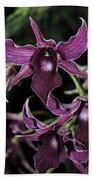 Orchid Dendrobium Lavender Star 204 Beach Towel
