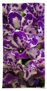 Orchid Grouping Beach Towel
