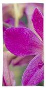 Orchid - Haliimaile Spring Pink Beach Towel