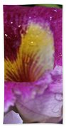 Orchid Heart And Soul Beach Towel