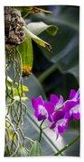 Orchid In Bloom Beach Towel