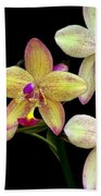 Orchid In Blossom Beach Towel