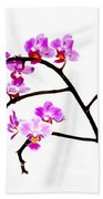 Orchid In White  Beach Towel