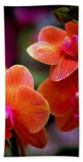 Orchid Melody Beach Towel by Karen Wiles