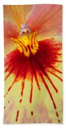Orchid Of Color Beach Towel