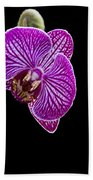 Orchid On Black Background Beach Towel