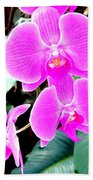 Orchid Series 1 Beach Towel