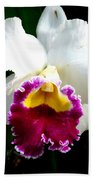 Orchid Series 2 Beach Towel