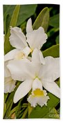 Orchid Sophronitis Beach Towel