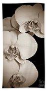Orchid Trio Sepia Beach Towel