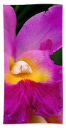 Orchid Variations 1 Beach Towel by Rona Black