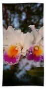 Orchid Elsie Sloan Beach Towel