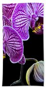 Orchids On Black Background Beach Towel