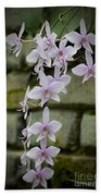 Orchids Pictures 47 Beach Towel