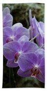 Orchids Square Format Img 5437 Beach Towel
