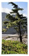 Oregon - Heceta  Beach Towel